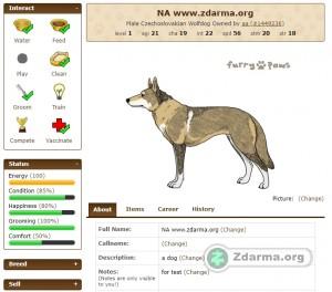 více než 200 ras psů - možnost si pořídit i české národní plemeno