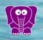 Logo aplikace Purple Elephant