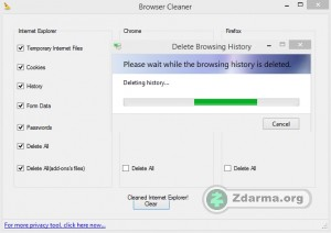 ie privacy cleaner: