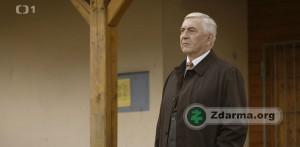 Miroslav Donutil jako Dr. Martin Elinger