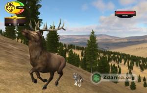 Lov losa ve hřa Wolf Quest 2.5